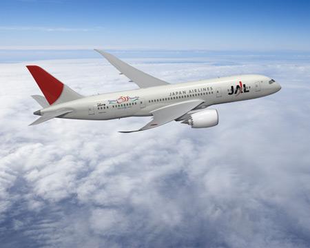 JAL flight