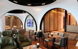 THY_Turkish Airlines_Istanbul_Arrival Lounge_002