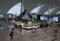 Dubai Airports Fly like a penguin