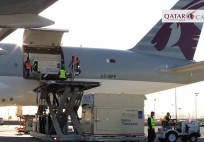 Qatar Airways - World class horses flown in style