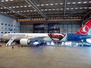THY_Turkish Airlines_batman-superman_Boeing 777_TC-JJN