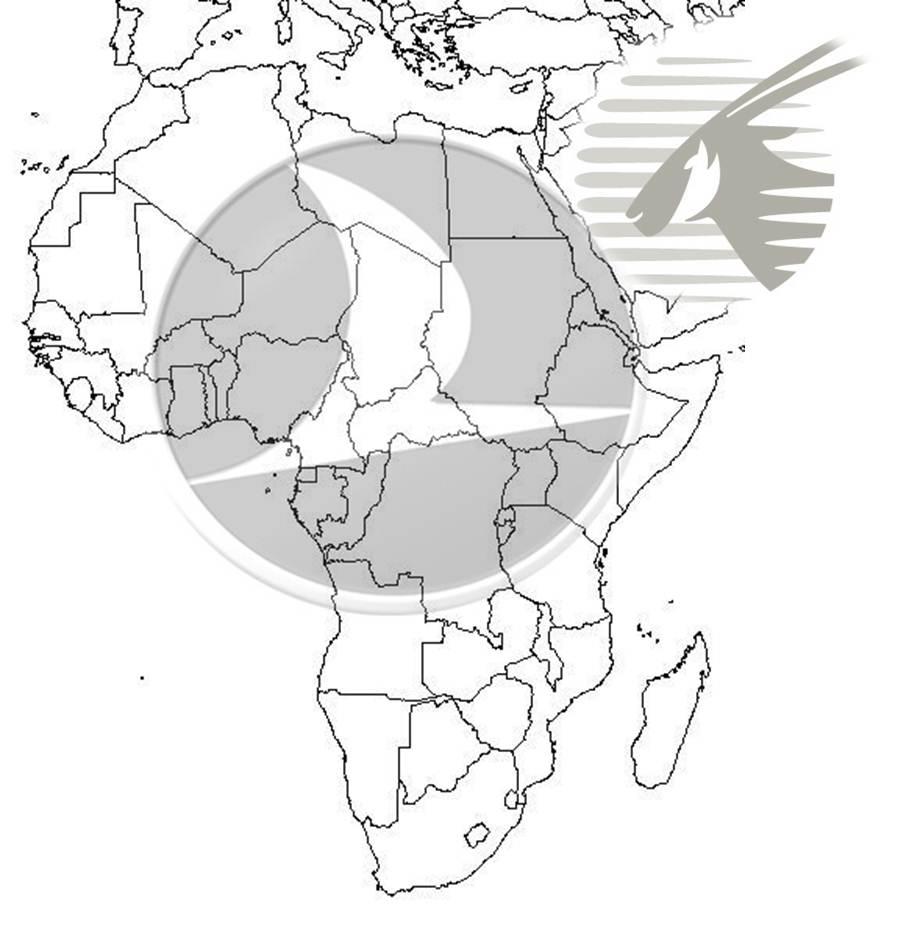 THY_Afrika_qatar_havayolu