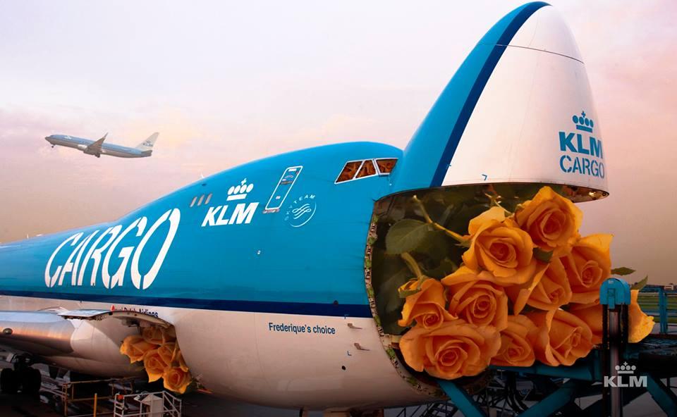 KLM Cargo_advertising_roses_boeing 747_2013