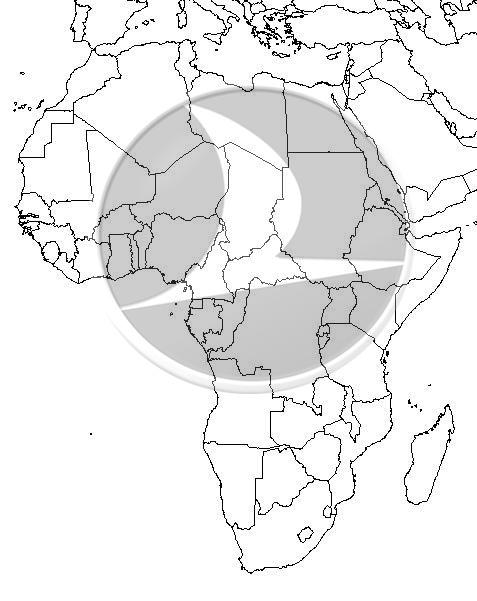 THY_Afrika