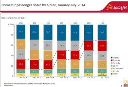 Hindistan_India_domestic market share by airline