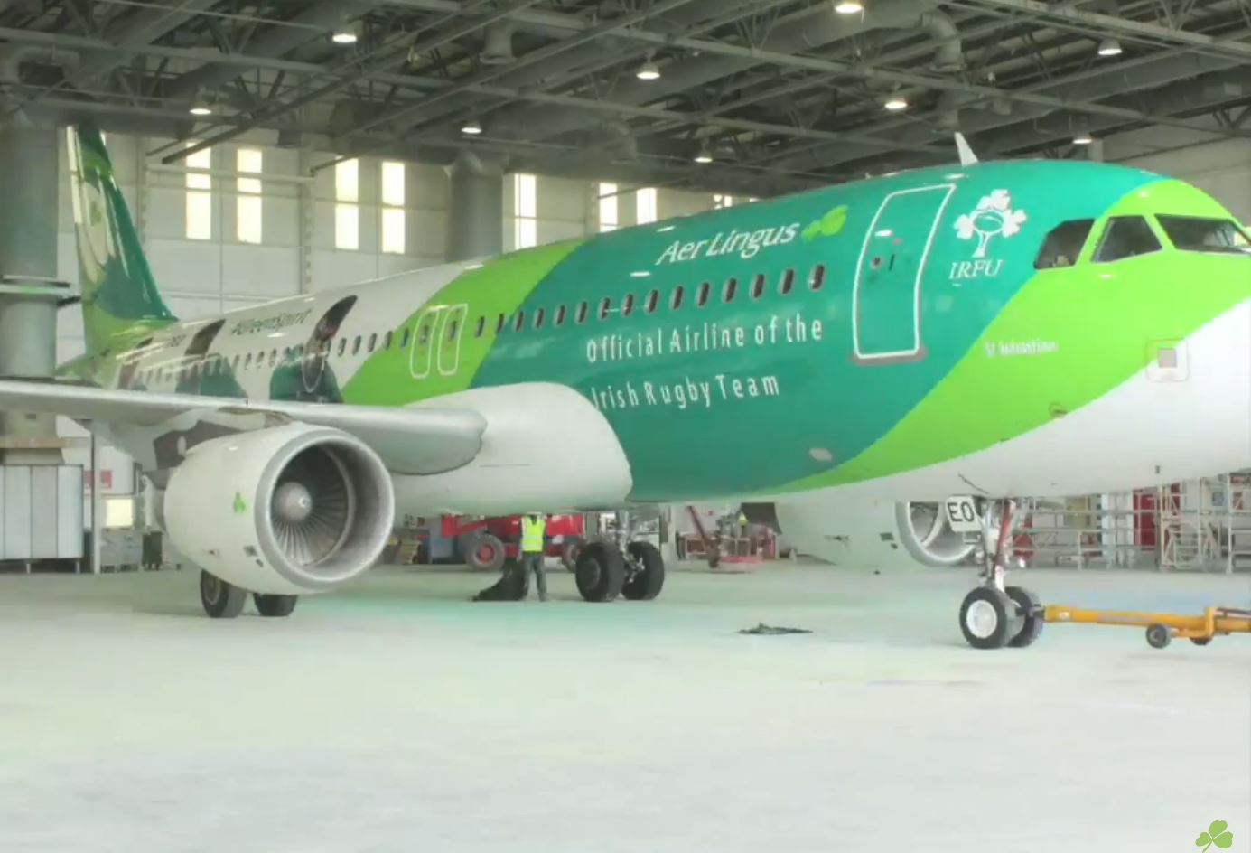 Unveiling of Aer Lingus' Newest Livery
