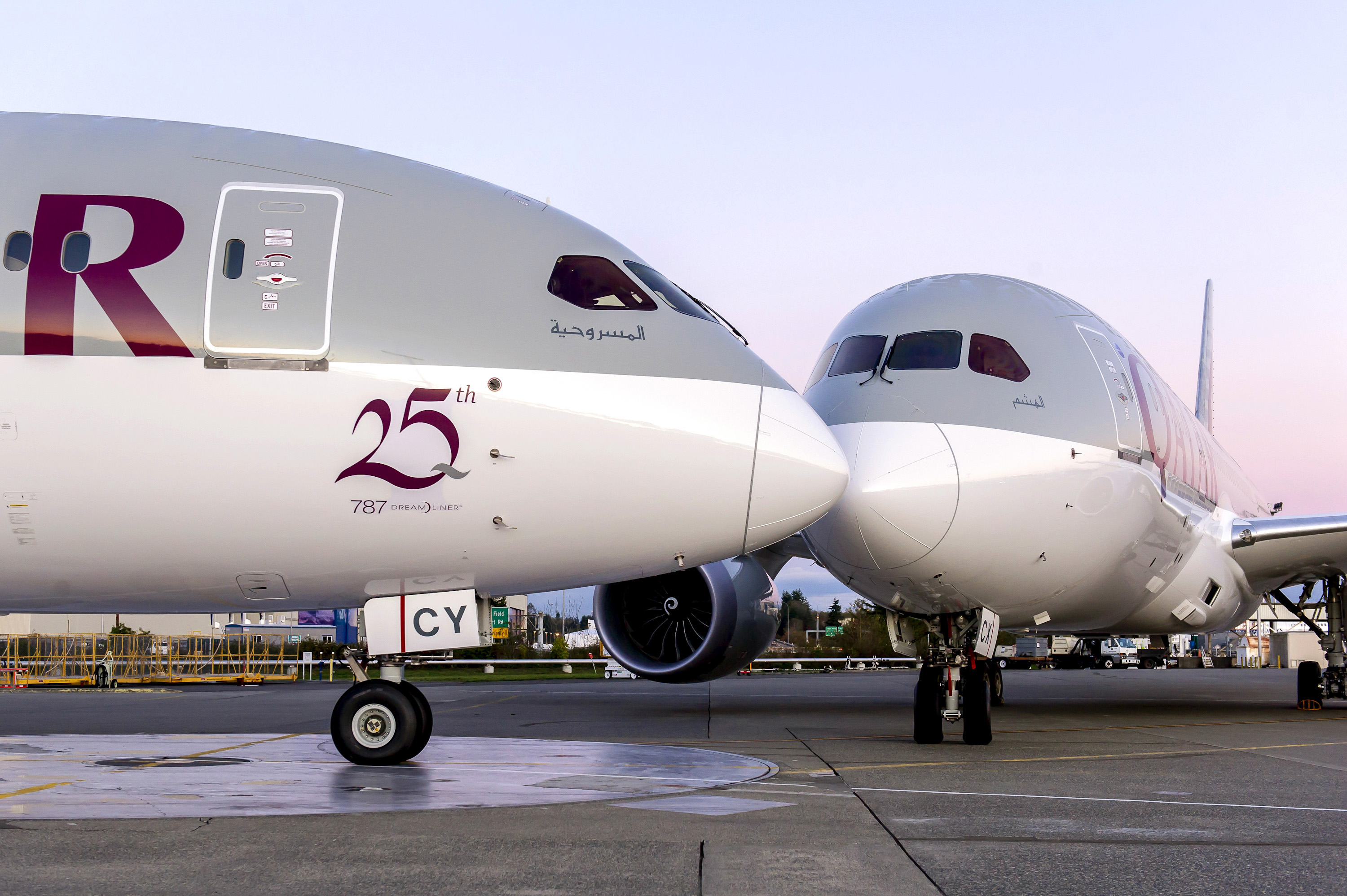 Qatar-Airways_Boeing-787-Dreamliner_25_delivery_Nov-2015