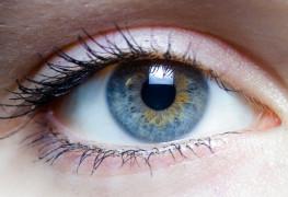 Iris_göz_scanner